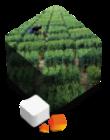 cube-unisigma